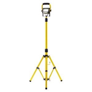 ProLight™ 15W Single Head w/ Standard
