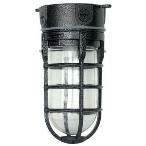 Industrial Ceiling Light, Hammered Black